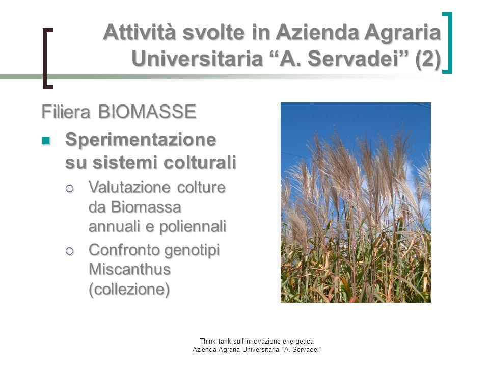 Attività svolte in Azienda Agraria Universitaria A. Servadei (2)