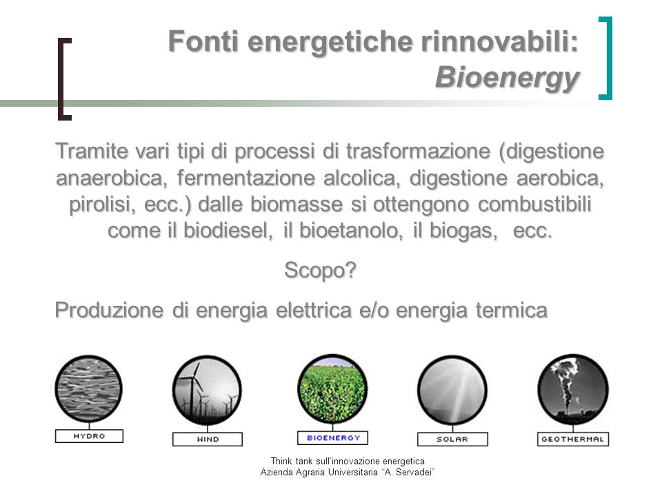 Fonti energetiche rinnovabili: Bioenergy