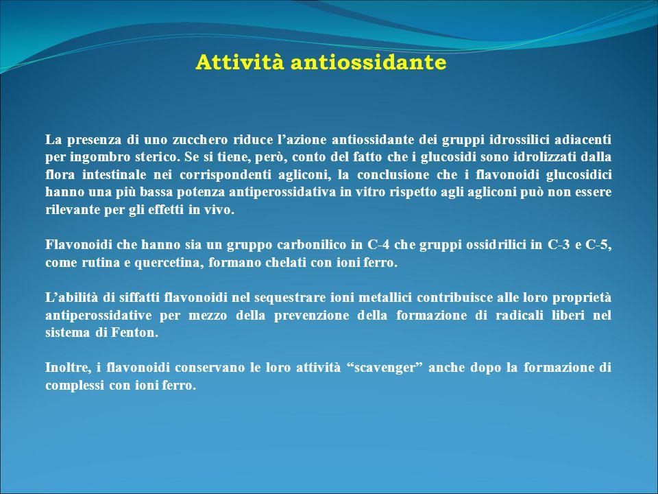 Attività antiossidante