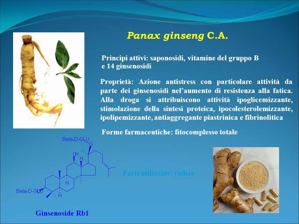 Panax ginseng C.A. Principi attivi: saponosidi, vitamine del gruppo B e 14 ginsenosidi.