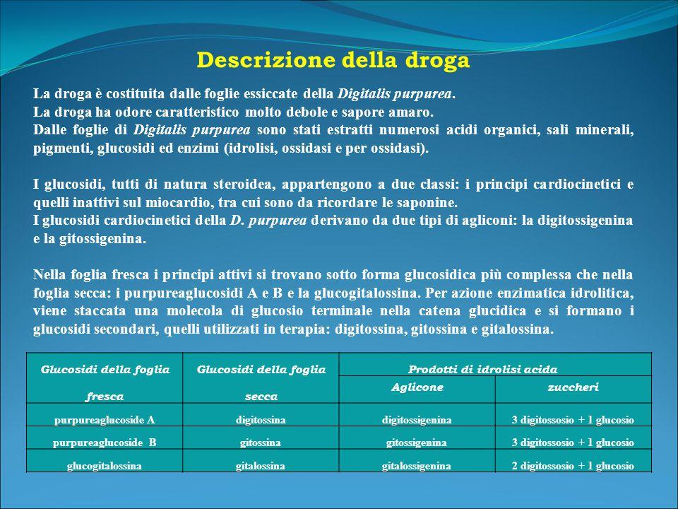 Descrizione della droga