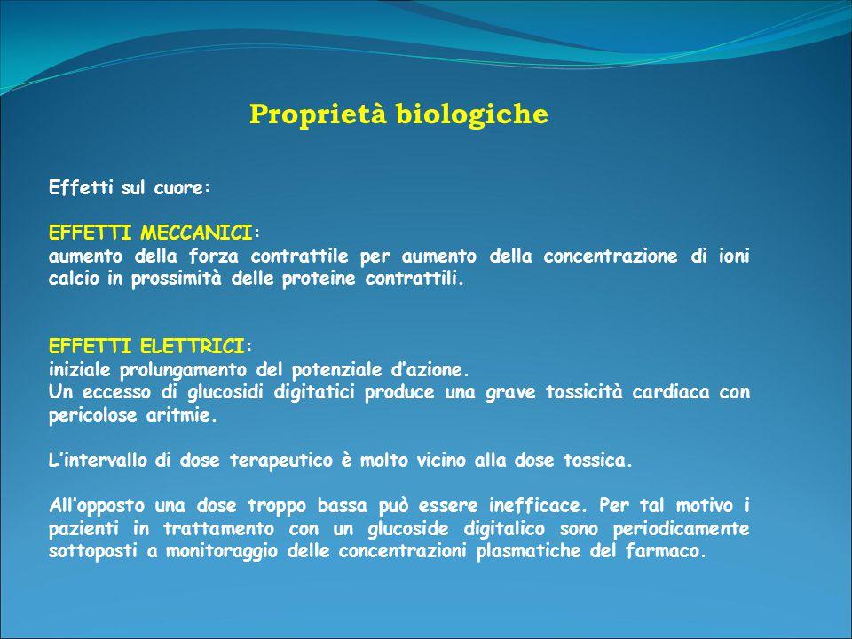 Proprietà biologiche Effetti sul cuore: EFFETTI MECCANICI: