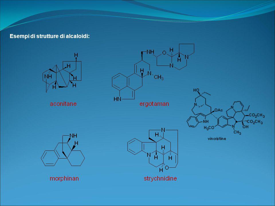 Esempi di strutture di alcaloidi: