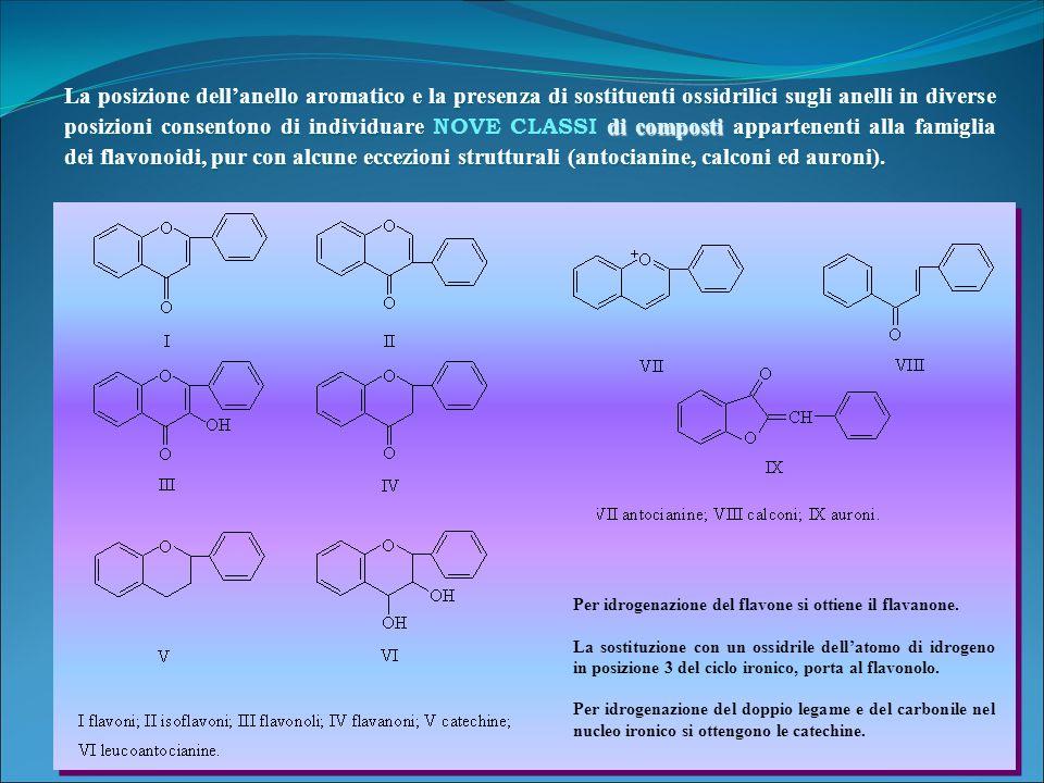 La posizione dell'anello aromatico e la presenza di sostituenti ossidrilici sugli anelli in diverse posizioni consentono di individuare NOVE CLASSI di composti appartenenti alla famiglia dei flavonoidi, pur con alcune eccezioni strutturali (antocianine, calconi ed auroni).