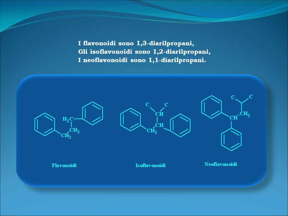 I flavonoidi sono 1,3-diarilpropani,