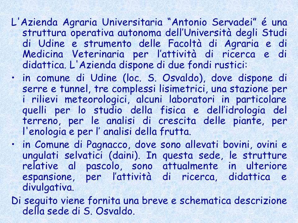 L Azienda Agraria Universitaria Antonio Servadei é una struttura operativa autonoma dell'Università degli Studi di Udine e strumento delle Facoltà di Agraria e di Medicina Veterinaria per l'attività di ricerca e di didattica. L Azienda dispone di due fondi rustici: