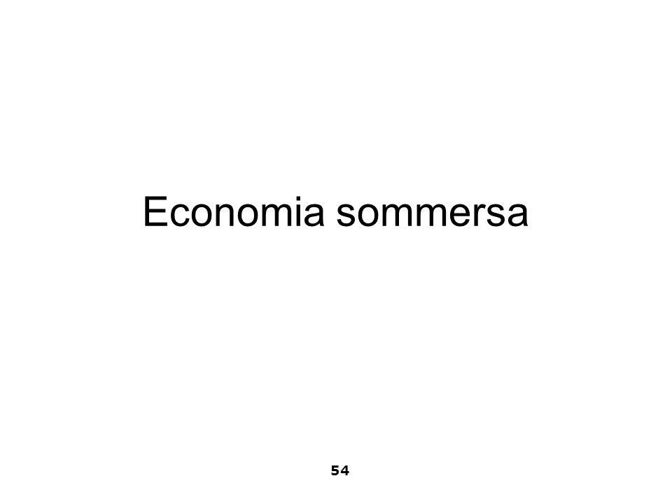Economia sommersa 54