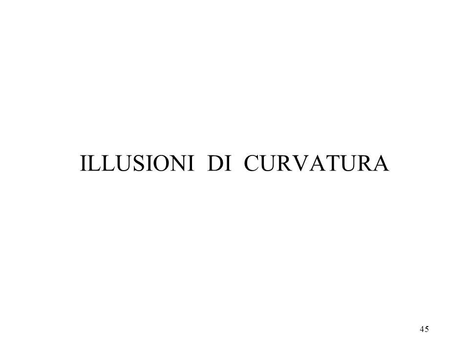 ILLUSIONI DI CURVATURA