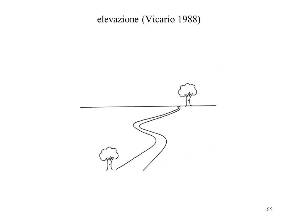 elevazione (Vicario 1988)