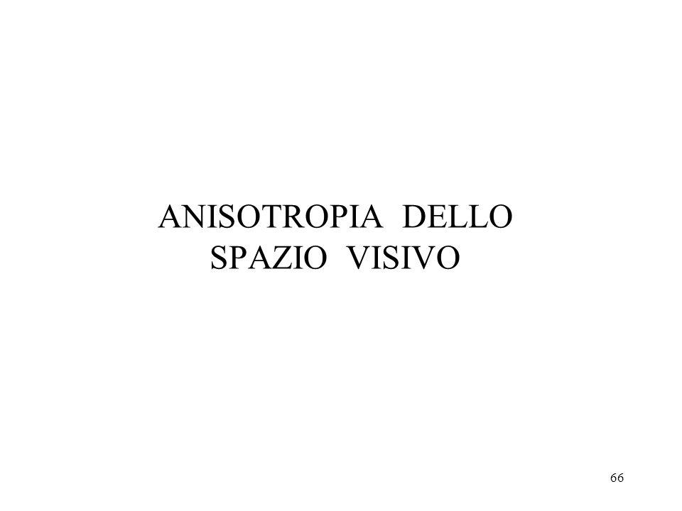ANISOTROPIA DELLO SPAZIO VISIVO