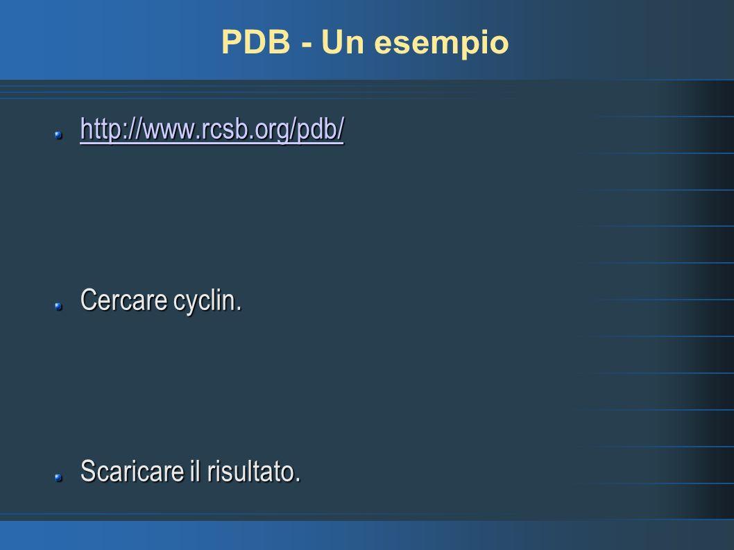 PDB - Un esempio http://www.rcsb.org/pdb/ Cercare cyclin.