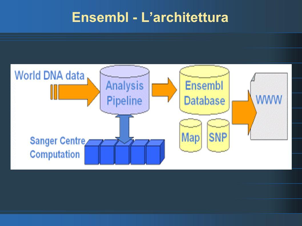 Ensembl - L'architettura