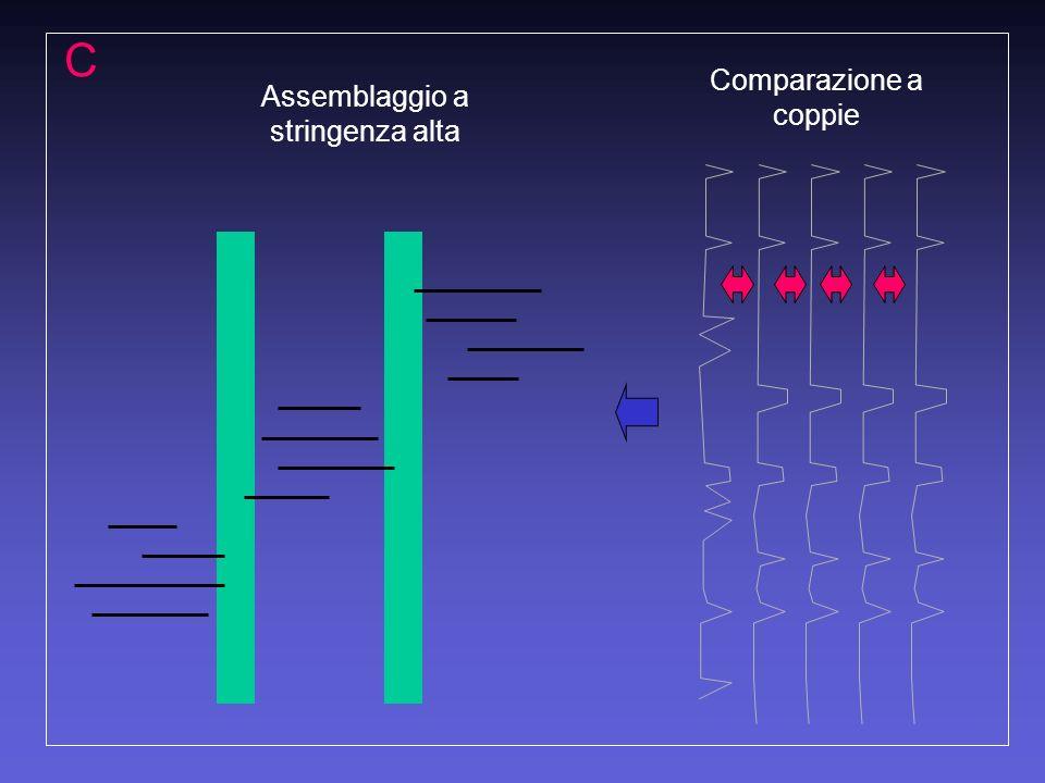 C Comparazione a coppie Assemblaggio a stringenza alta