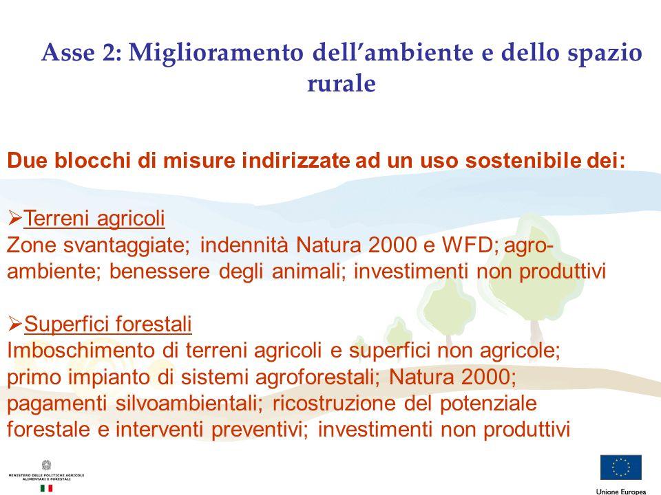 Asse 2: Miglioramento dell'ambiente e dello spazio rurale