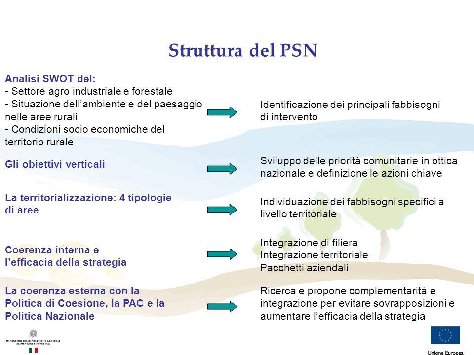 Struttura del PSN Analisi SWOT del: