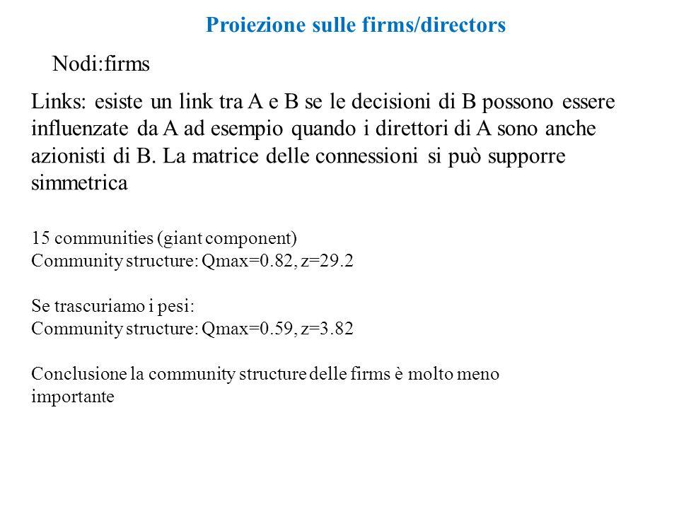Proiezione sulle firms/directors