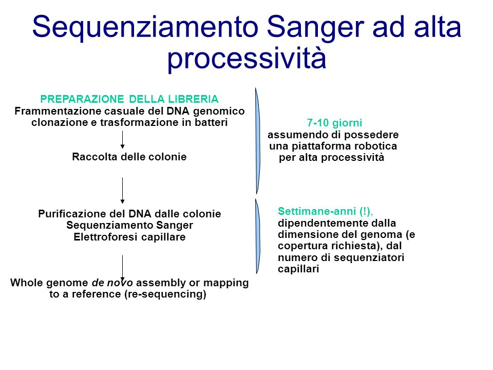 Sequenziamento Sanger ad alta processività