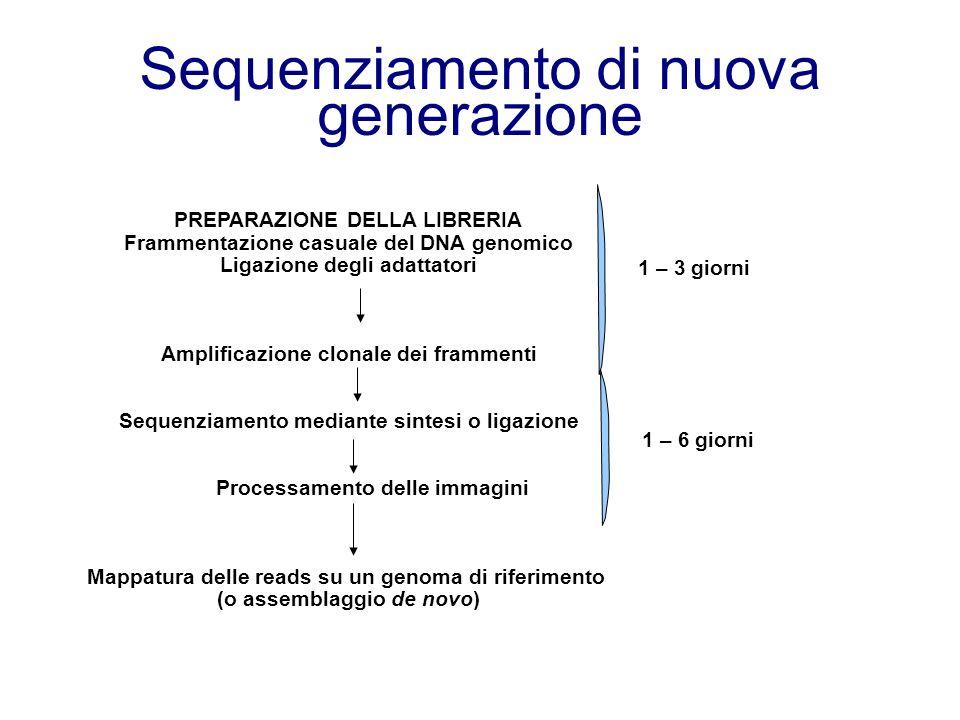 Sequenziamento di nuova generazione