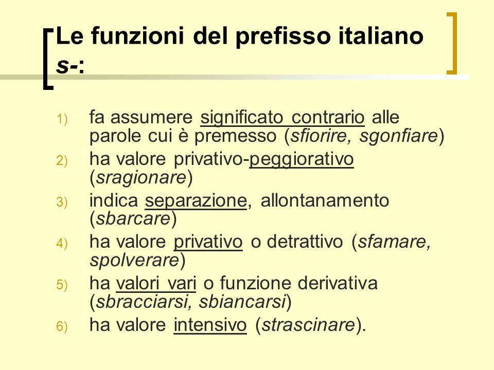 Le funzioni del prefisso italiano s-: