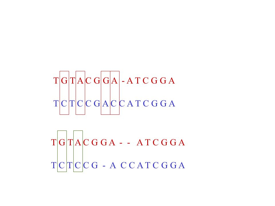 T G T A C G G A - A T C G G A T C T C C G A C C A T C G G A. T G T A C G G A - - A T C G G A.