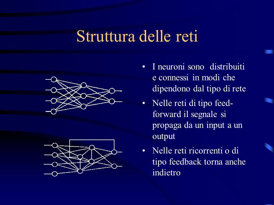 Struttura delle reti I neuroni sono distribuiti e connessi in modi che dipendono dal tipo di rete.