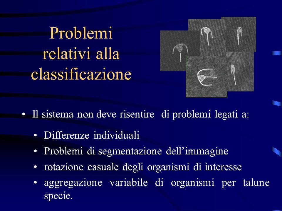 Problemi relativi alla classificazione