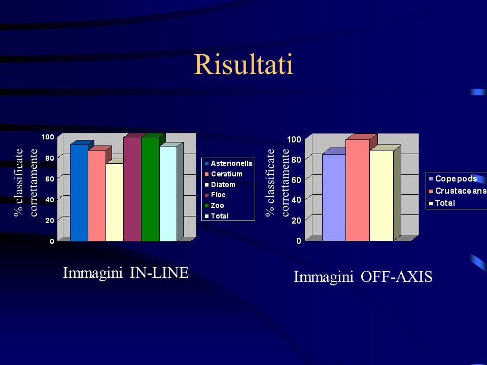 Risultati Immagini IN-LINE Immagini OFF-AXIS