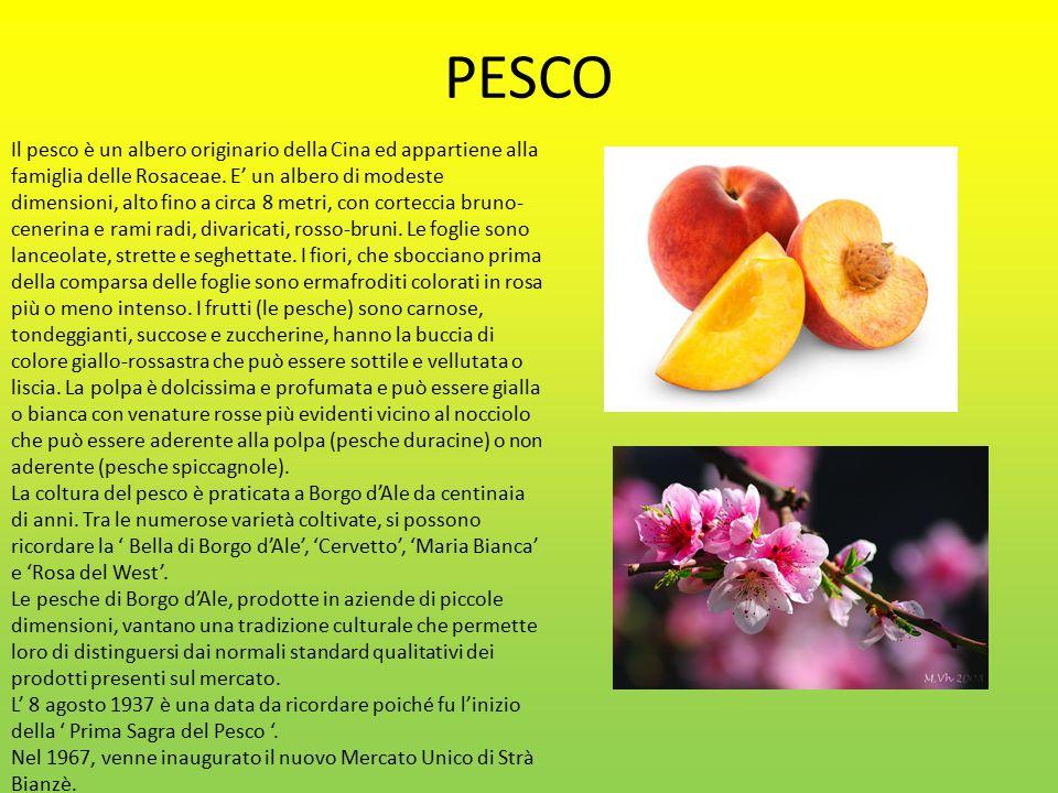 PESCO