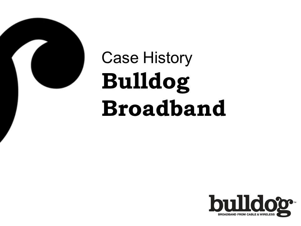 Case History Bulldog Broadband