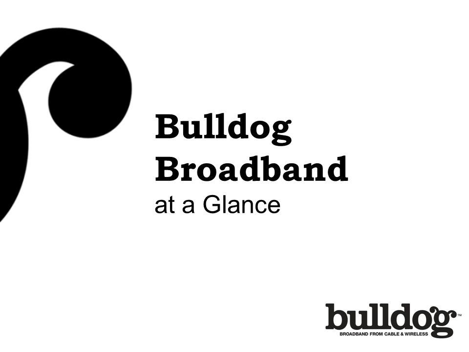Bulldog Broadband at a Glance