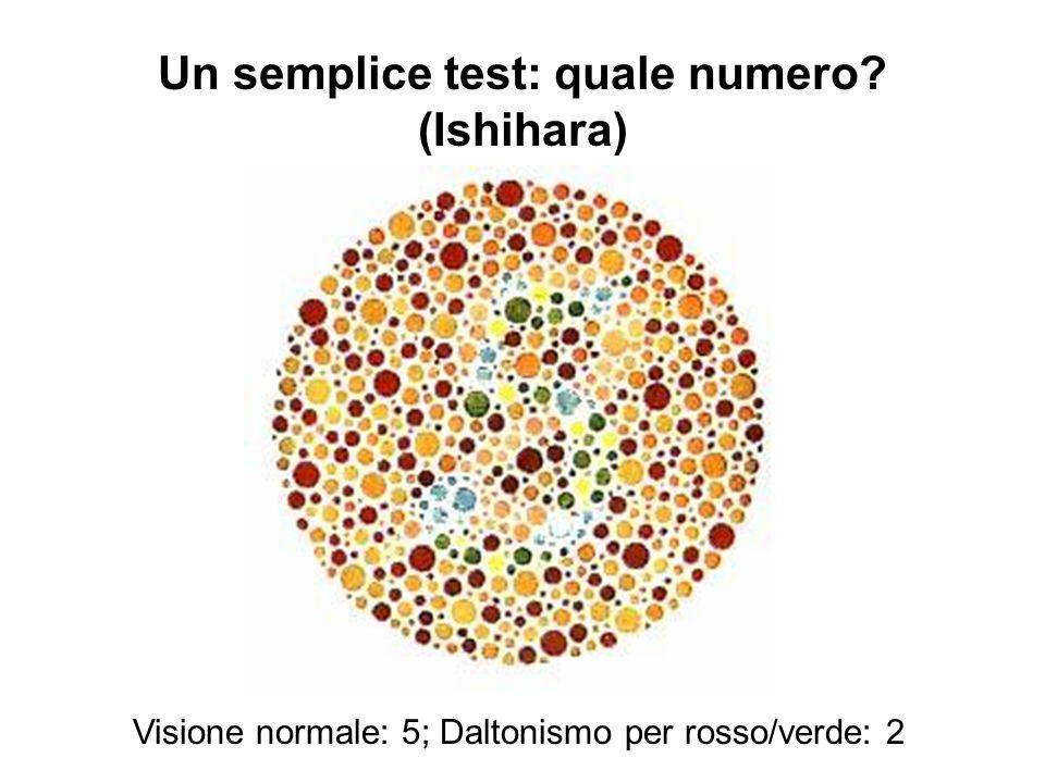 Un semplice test: quale numero (Ishihara)