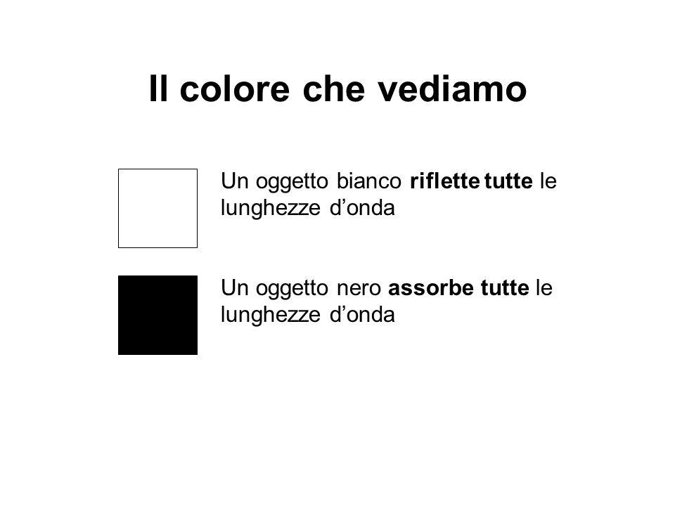 Il colore che vediamo Un oggetto bianco riflette tutte le lunghezze d'onda.