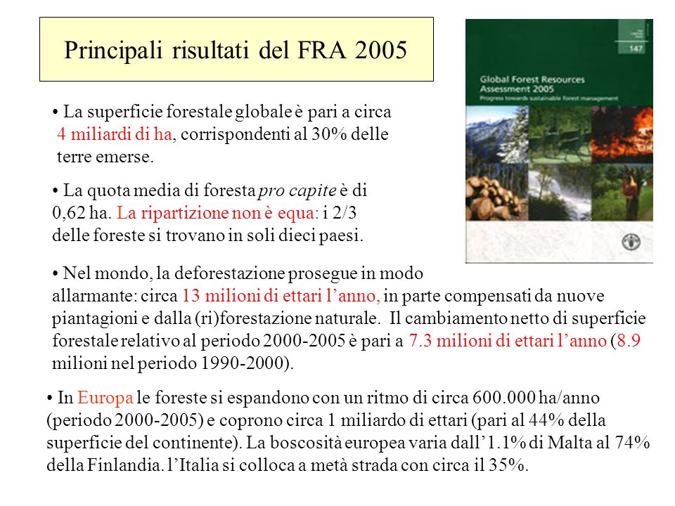 Principali risultati del FRA 2005