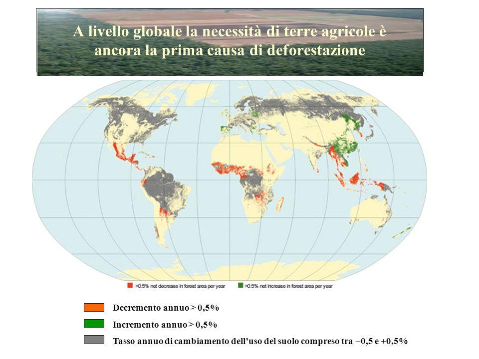 A livello globale la necessità di terre agricole è ancora la prima causa di deforestazione