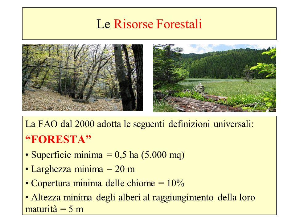 Le Risorse Forestali FORESTA