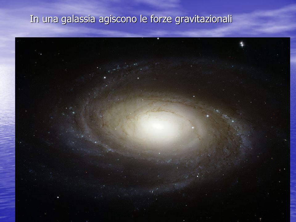 In una galassia agiscono le forze gravitazionali