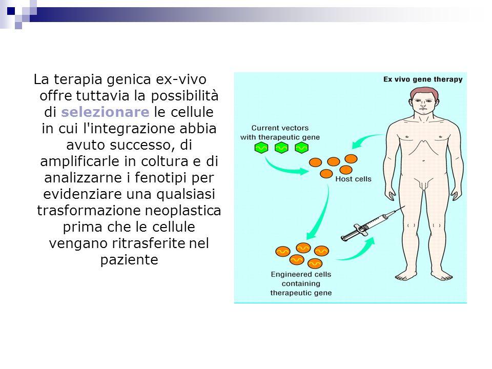 La terapia genica ex-vivo offre tuttavia la possibilità di selezionare le cellule in cui l integrazione abbia avuto successo, di amplificarle in coltura e di analizzarne i fenotipi per evidenziare una qualsiasi trasformazione neoplastica prima che le cellule vengano ritrasferite nel paziente