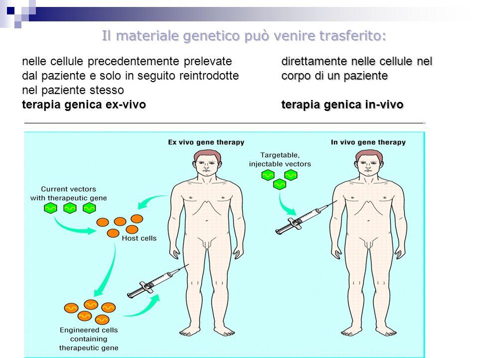 Il materiale genetico può venire trasferito: