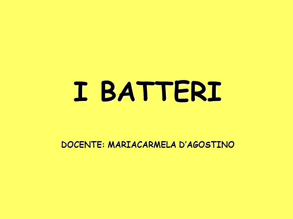I BATTERI DOCENTE: MARIACARMELA D'AGOSTINO