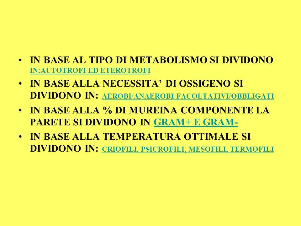 IN BASE AL TIPO DI METABOLISMO SI DIVIDONO IN:AUTOTROFI ED ETEROTROFI