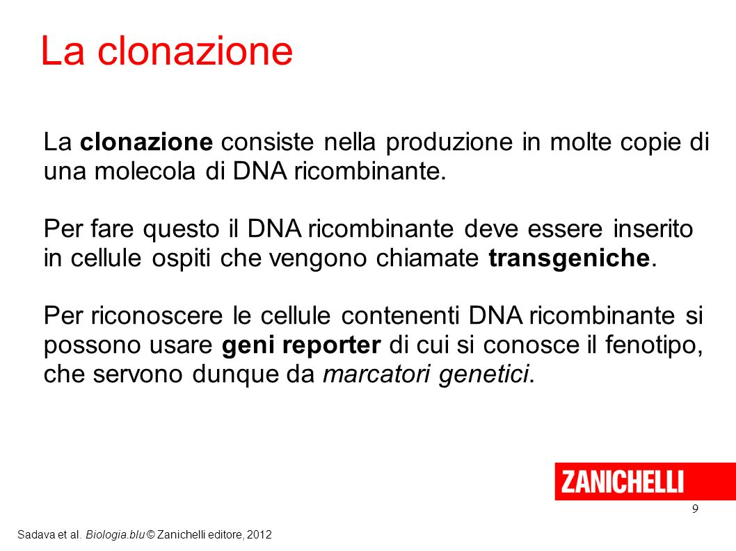 La clonazione La clonazione consiste nella produzione in molte copie di una molecola di DNA ricombinante.