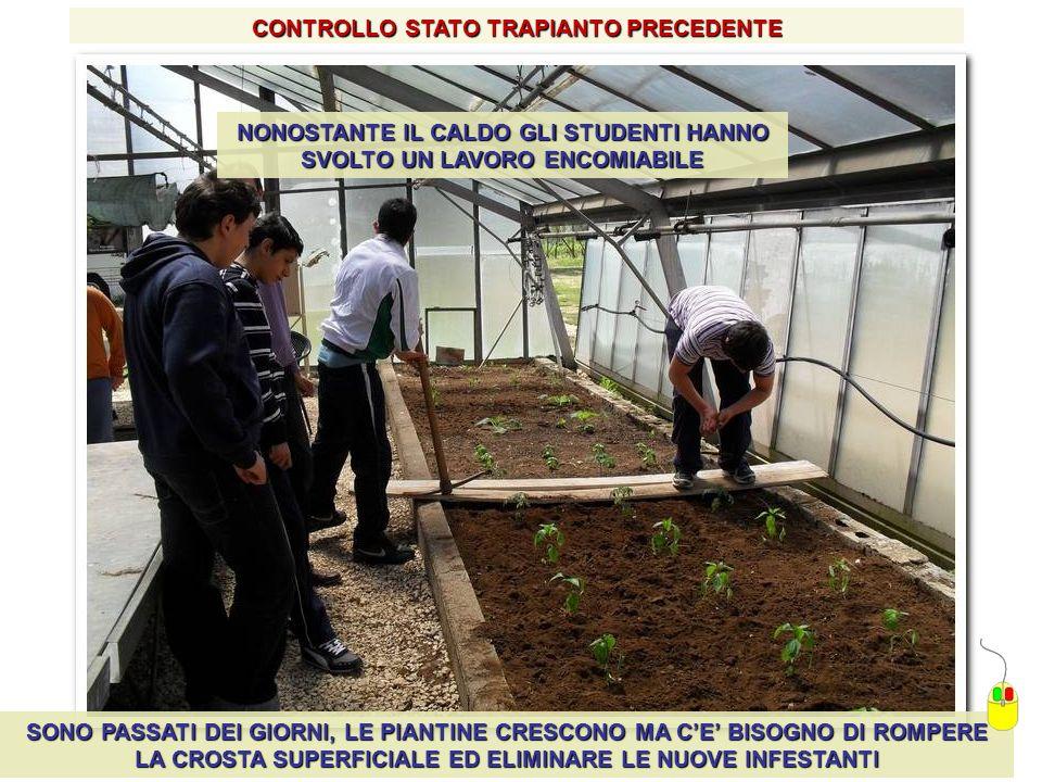 CONTROLLO STATO TRAPIANTO PRECEDENTE