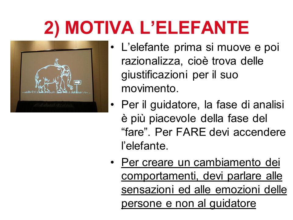 2) MOTIVA L'ELEFANTE L'elefante prima si muove e poi razionalizza, cioè trova delle giustificazioni per il suo movimento.