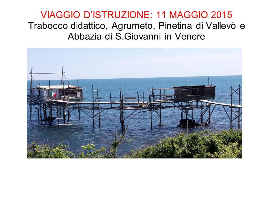 VIAGGIO D'ISTRUZIONE: 11 MAGGIO 2015 Trabocco didattico, Agrumeto, Pinetina di Vallevò e Abbazia di S.Giovanni in Venere