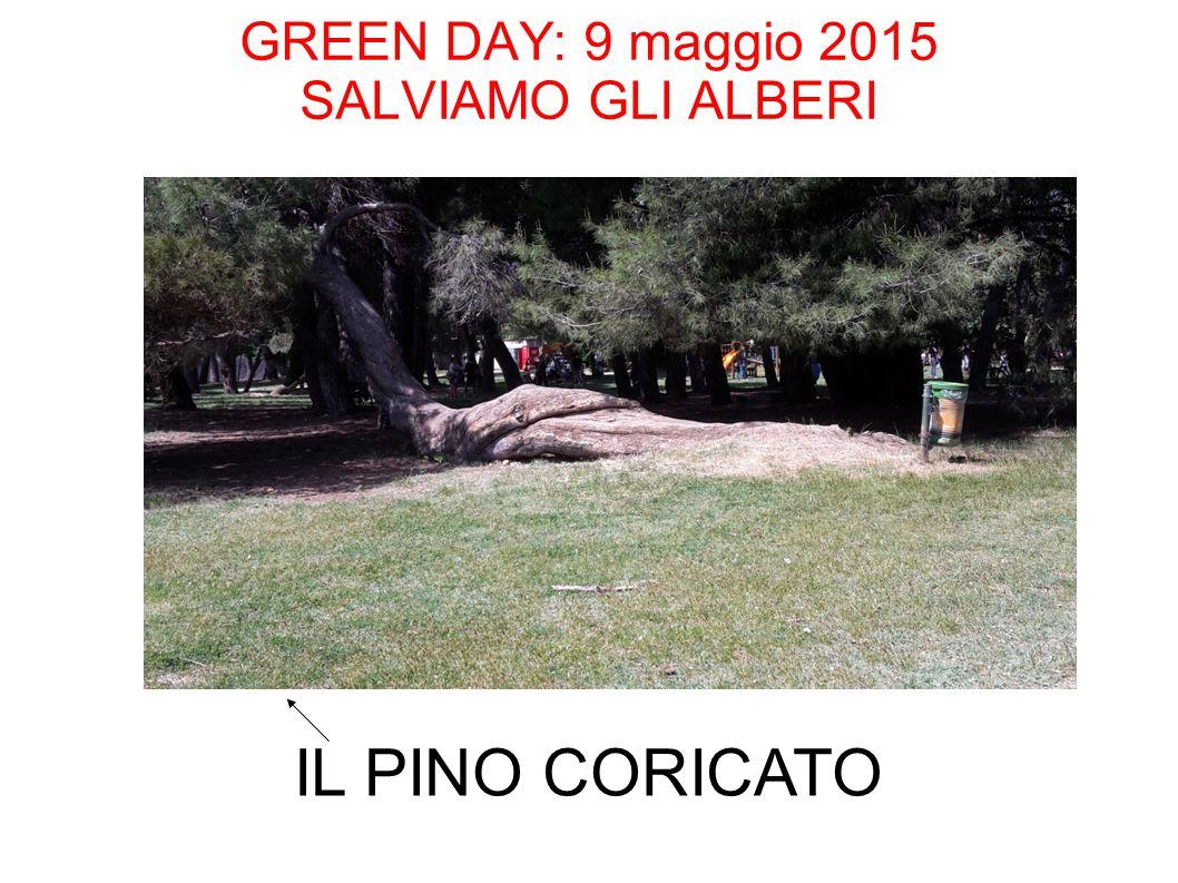 GREEN DAY: 9 maggio 2015 SALVIAMO GLI ALBERI