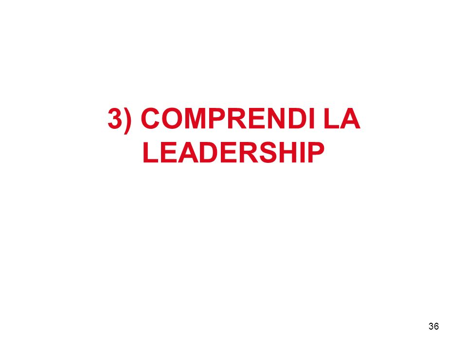 3) COMPRENDI LA LEADERSHIP