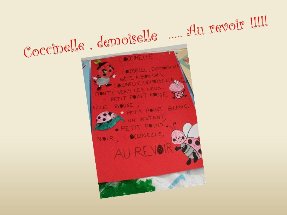 Coccinelle , demoiselle ….. Au revoir !!!!!