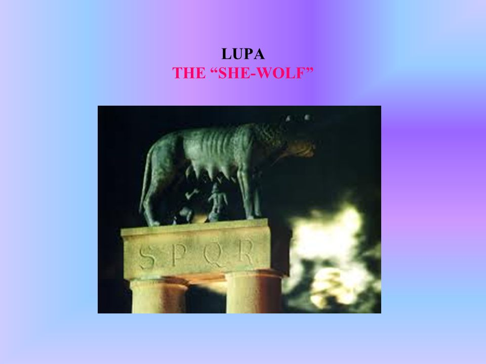 LUPA THE SHE-WOLF