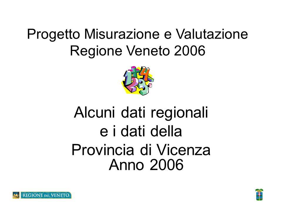 Provincia di Vicenza Anno 2006