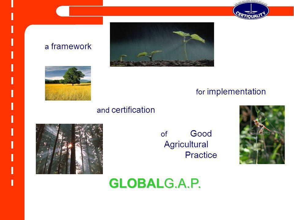 GLOBALG.A.P. Agricultural Practice a framework for implementation